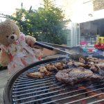 Honey Bear taking over the BBQ
