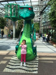 Cara Playmobil Outdoor Dragon