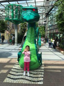 Cara Playmobil Outdoor Dragon