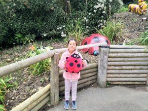 Isle of Wight Blackgang Chine ladybug